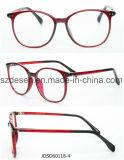 Großverkauf kundenspezifischer Plastikoptischer Stahlrahmen/Eyewear/Anzeigen-Gläser