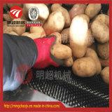 Machine à laver d'écaillement de balai de taro de gingembre de pomme de terre