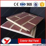 Panneaux décoratifs de mur extérieur de modèle de brique de raie de Waterlight
