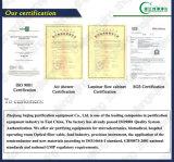 Cappuccio del Governo di ventilazione di vendite dirette della fabbrica/vapore del laboratorio (SW-TFG-15)