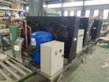 Kombinierte Maschine des Eis-2000kgs für Supermarkt-Nahrungsmittelspeicher