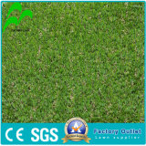 Le Gazon artificiel pour la norme de soccer/terrain de football de Changzhou Zhonglian