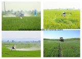Weedicide selettivo Simetryn 97% TC 25% WP del diserbante del riso di protezione