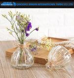 Produtos vidreiros de vidro do vaso do espaço livre da forma da abóbora para a decoração