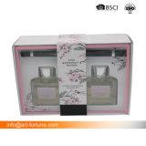 Set des 2 Duft-Diffusers (Zerstäuber) mit Rattan-Stöcken und des kundenspezifischen Kennsatzes im Geschenk-Kasten für Haus