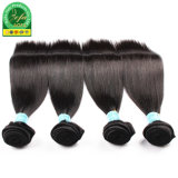 Tessitura brasiliana dei capelli umani del Virgin dei fornitori di Guangzhou