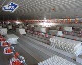 Le Sénégal Poids léger châssis en acier préfabriqués Maison de la volaille/bâtiment de poulet