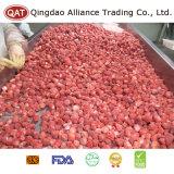 수출을%s 동결된 전체적인 딸기