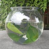 O Aquário de plástico transparente taça de peixe de plástico