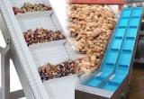 Система ленточного транспортера качества еды PVC/PU с по-разному толщиной