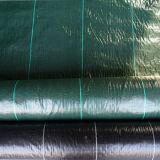 Fare per ordinare la stuoia tessuta disponibile di controllo di Weed di vari colori