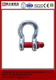 Painted Color Safety High Quality G-209 Shackle
