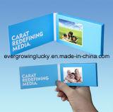 Kleinster 2.4inch LCD Bildschirm-Videokarte