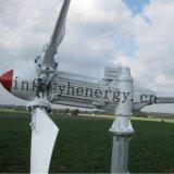 niedriger Wind 5kw, der lärmarmen Wind-Turbine-Generator laufen lässt