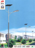 Wbr109 30W Single Lamp Solar LED Sodium Street Light