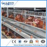 가금 장비 4 층 계란 층 닭 감금소