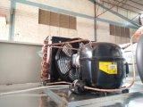 Congelatore di frigorifero commerciale verticale approvato dell'acciaio inossidabile del Ce