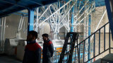 100tons der Weizen-Getreidemühle-Maschinen-Pflanze im Iran