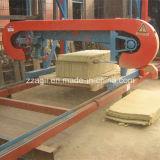 A madeira automática que processa a faixa horizontal viu a serração dos registros da madeira