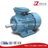 鋳鉄のリスケージ3段階の電気モーター220V/380V/415V 50/60Hz