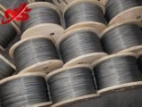 Corde galvanisée petit par câble 6X7+FC de fil d'acier