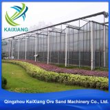 저가 판매를 위해 산업 경작을%s 농업 온실 정원 온실