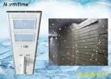 90W 100W 110W 120W einteilige LED Solargarten-Straßenlaterne