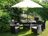 La vente en gros a employé diner les meubles extérieurs de jardin réglé