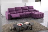 Sofá de la sala de estar con el sofá moderno del cuero genuino fijado (415)