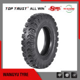 Pattern SH138/148/158/168 /188の軽いTruck Bias Tyre 750-16