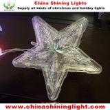 زاهية جيّدة سعر [لد] عيد ميلاد المسيح زخرفة أضواء