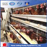 Automatischer Wasser-Huhn-Korb-bester Entwurf für Schichten/Hünchen/Bratrost