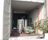 Pianta di ghiaccio messa in recipienti del fiocco 10ton/Day per l'azienda di trasformazione dei pesci
