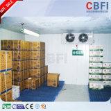 Kompletter Gebäudestruktur-Fisch-Speicher-Kühlraum