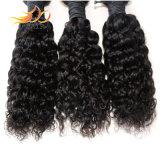 8Aバージンの人間の毛髪のジェリーの卸し売りカールのマレーシアのRemyの毛のよこ糸
