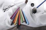 Penna all'ingrosso del Palo di legno solido del filetto dell'amo di colore dei colpi del fumetto