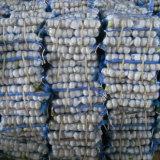 Alta qualità di aglio bianco fresco cinese in piccolo pacchetto