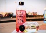 bottiglia di vetro portatile di Resitance di calore di disegno di modo 1000ml/600ml per i regali