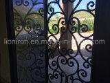Porta da rua decorativa e funcional com projetos do ferro feito