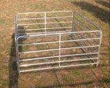гальванизированные 5rails стальные панели скотин поголовья (ISO9001)