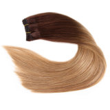 Originea TM Ombre Hair brasiliano con Closure Top Aliexpress 3 Bundles Hair Weft con 1PC Free Parte Lace Closure 1b/4/27