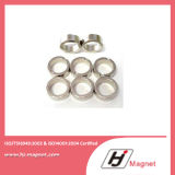 Magnete di anello permanente di NdFeB del neodimio esagonale N35-N40 con potente eccellente