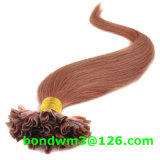estensione brasiliana dei capelli di punta di fusione U di Unprocesed Kertain del Virgin 8A
