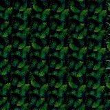 Courbe verte Yingcai Hydro Film d'impression Transfert d'eau de trempage