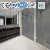Color de bronce de Europa/vidrio de flotador teñido/claro para el edificio/la decoración