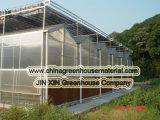 Invernadero de la hoja del policarbonato para el crecimiento del tomate
