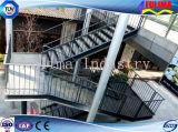 Escalera / plataforma / escaleras de acero al aire libre (FLM-SP-006)