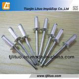 은에 의하여 직류 전기를 통하는 알루미늄 강철 장님 리베트 (8mm-30mm)