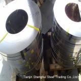Fabricant professionnel de la bobine en acier inoxydable (AISI 321)