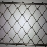 PVC上塗を施してあるステンレス鋼のチェーン・リンクの斜方形の網